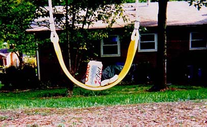 David-Recyclables On A Swing